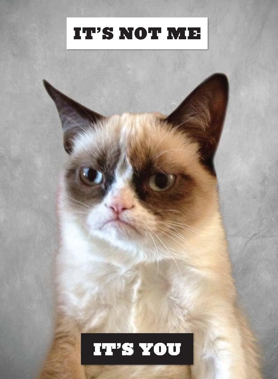 grumpy cat a grumpy book grumpy cat book in stock
