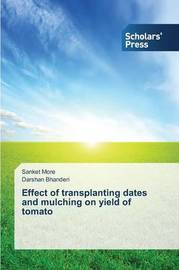 Effect of Transplanting Dates and Mulching on Yield of Tomato by More Sanket