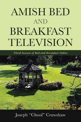 Amish Bed and Breakfast Television by Joe Crawshaw