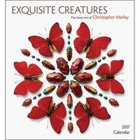 Exquisite Creatures