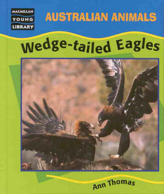 Wedge-Tailed Eagles by Ann Thomas
