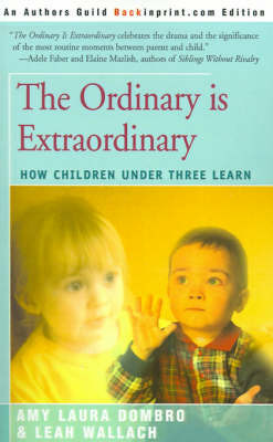 The Ordinary is Extraordinary by Amy Laura Dombro