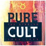 Pure Cult Anthology 1984/1995 DVD