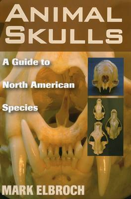 Animal Skulls by Lawrence Mark Elbroch