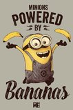 Despicable Me - Minions Powered By Bananas Maxi Poster (310)