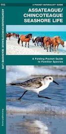 Assateague/Chincoteague Seashore Life: An Introduction to Familiar Species by Senior Consultant James Kavanagh (Senior Consultant, Oxera Oxera Oxera)