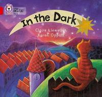 In the Dark by Claire Llewellyn