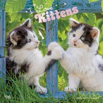 I Love Kittens 2020 Square Foil Wall Calendar