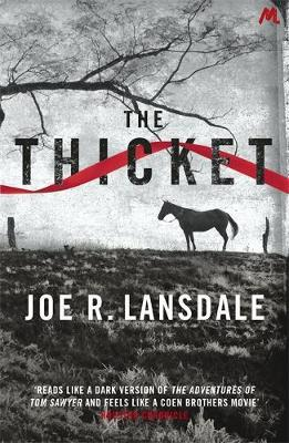 The Thicket by Joe R Lansdale