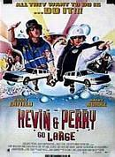 Kevin and Perry Go Large on DVD