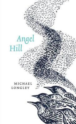 Angel Hill by Michael Longley