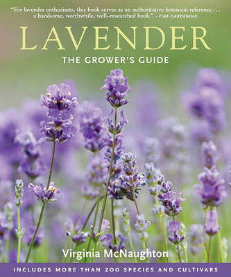 Lavender by Virginia McNaughton