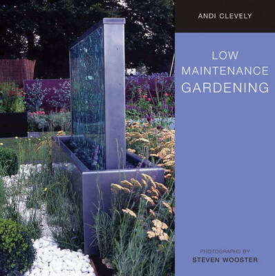 Low Maintenance Gardening image