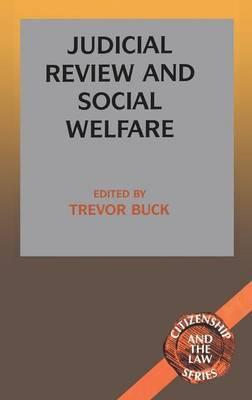 Judicial Review and Social Welfare image