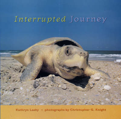 Interrupted Journey by Kathryn Lasky image