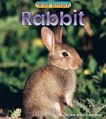Rabbit by Richard Spilsbury