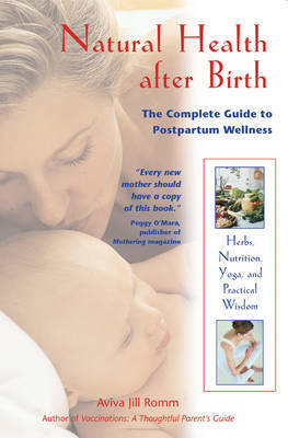 Natural Healing After Birth by Aviva Jill Romm image