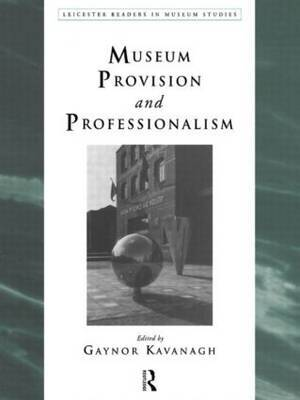 Museum Provision and Professionalism image