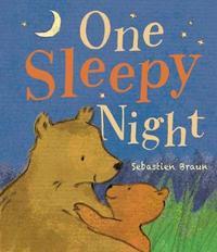 One Sleepy Night by Little Tiger Press