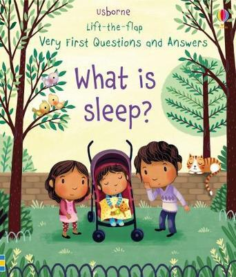What is Sleep? by Katie Daynes image