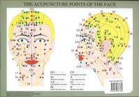Acupuncture Points of the Face