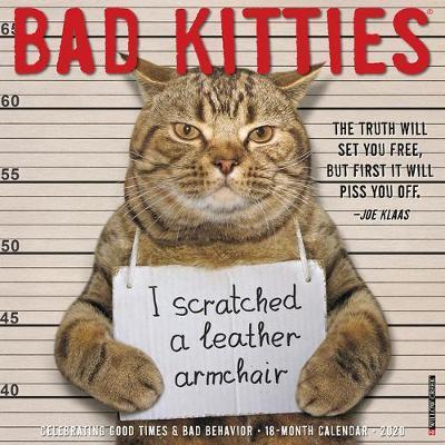 Bad Kitties 2020 Wall Calendar by Willow Creek Press image