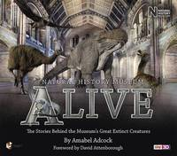 Natural History Museum Alive by Amabel Adcock