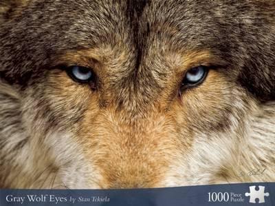 Gray Wolf Eyes
