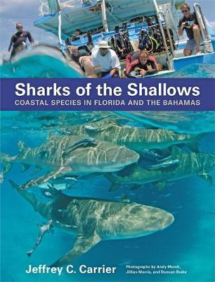Sharks of the Shallows by Jeffrey C. Carrier image