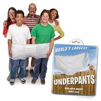 World's Largest Underpants
