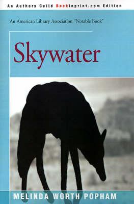 Skywater by Melinda Worth Popham image