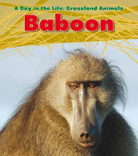 Baboon by Louise A Spilsbury