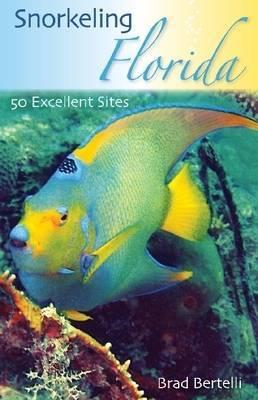 Snorkeling Florida by Brad Bertelli image