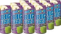 Fresh Up Big Fizz Apple & Sum Ahh Fruits 500ml x12