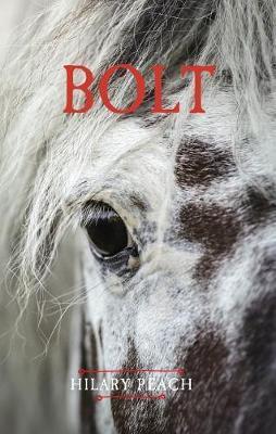 Bolt by Hilary Peach