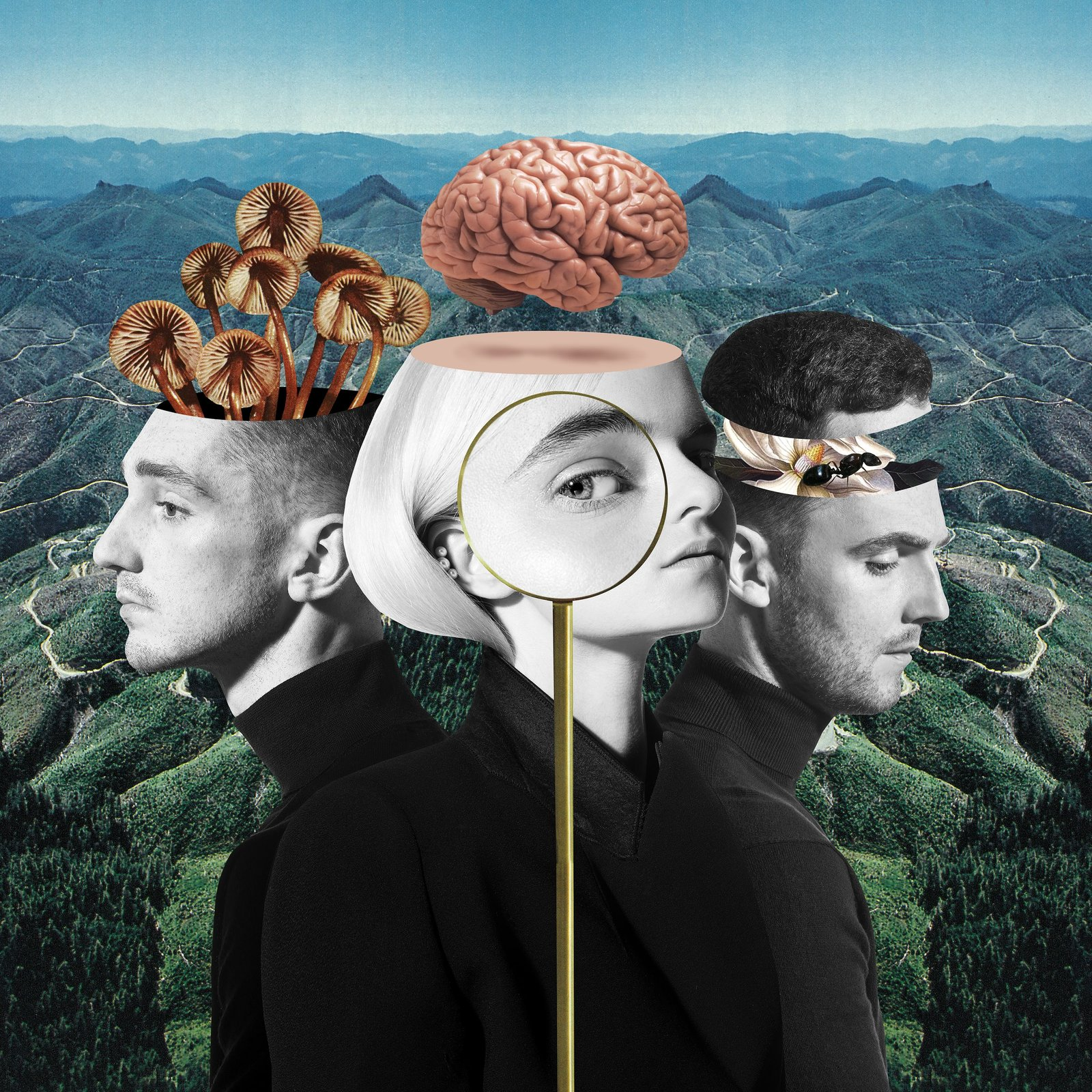 What Is Love? by Clean Bandit image