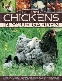Keeping Chickens In Your Garden by Fred Hams