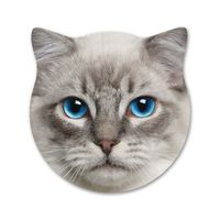 Splosh Kitty Ceramic Coaster - Jasper