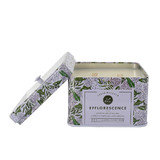 Lulie Wallace Soy Wax Scented Candle - Efflorescence