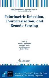 Polarimetric Detection, Characterization and Remote Sensing