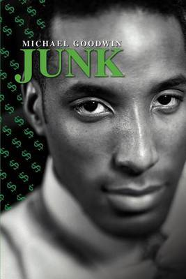 Junk by Michael Goodwin image