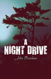 A Night Drive by John Brackeen image