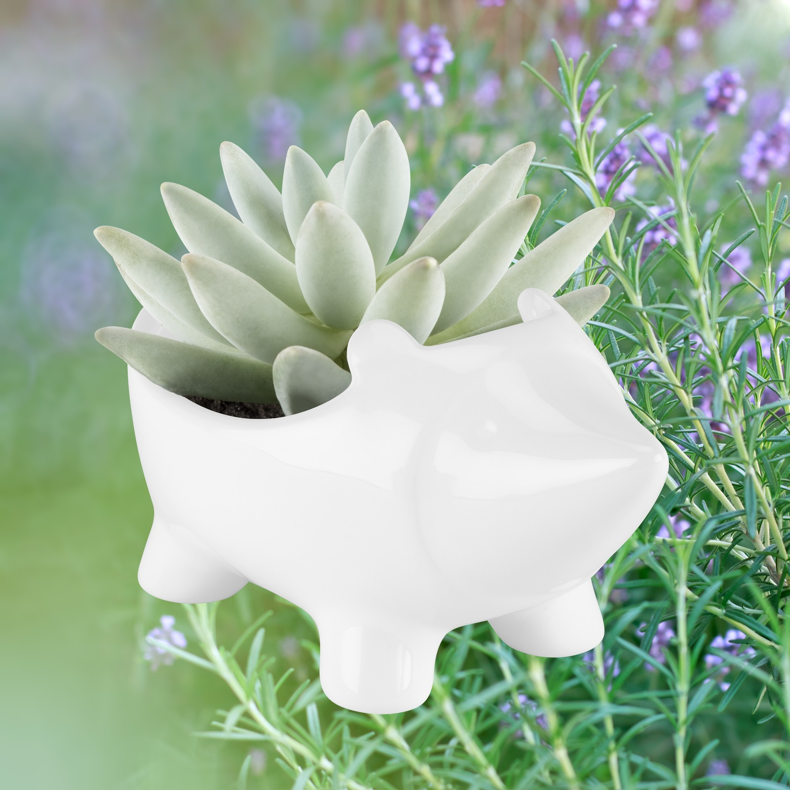 TrueZoo: Hedgehog Planter- White image