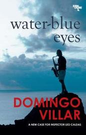 Water-blue Eyes by Domingo Villar image