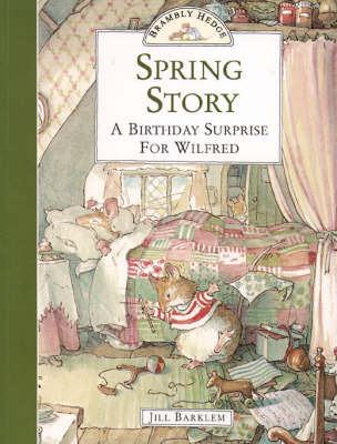 a birthday surprise story This story was written as a birthday gift for my 7 year old niece / my big birthday surprise / the sun was shining through my bedroom curtains when i woke up i was excited and for a moment could not think why.