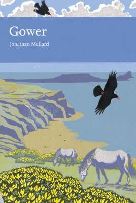 Gower by Jonathan Mullard