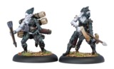 Hordes: Legion of Everblight - Blighted Nyss Archer Officer and Ammo Porter Unit Attachment