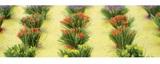 Detachable Flower Bushes (HO Scale) 30 pack