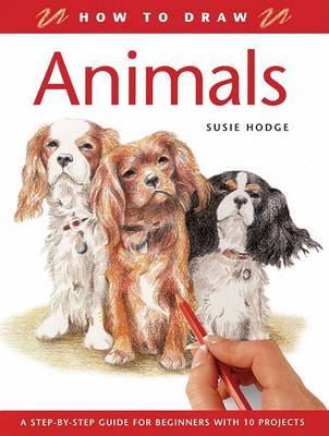 Animals by Susie Hodge