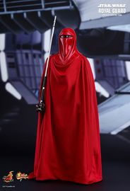 "Star Wars: Royal Guard - 12"" Articulated Figure"